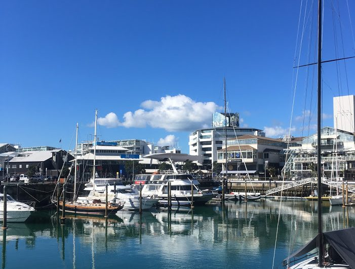 viaduct_harbour