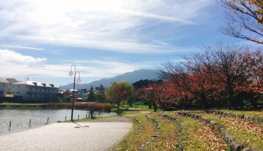福岡市城南区片江に住んで2ヶ月。良いところや気づきなどの感想
